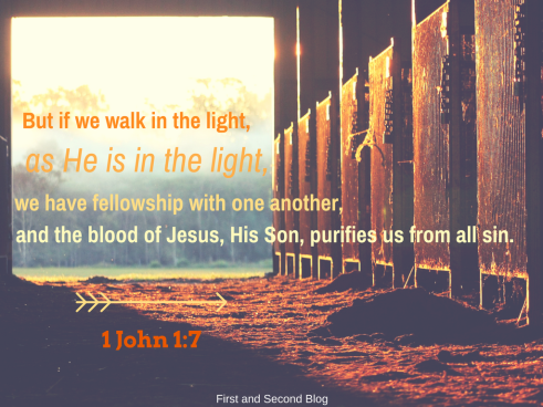 but-if-we-walk-in-the-light-as-he-is-in-the-light-we-have-fellowship-with-one-another-and-the-blood-of-jesus-his-son-purifies-us-from-allb-sin-1